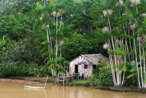 Секреты реки Амазонка